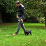 Zwart Labradorteefje Nika Yochiver