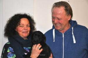 Zwarte Labrador Retriever pup