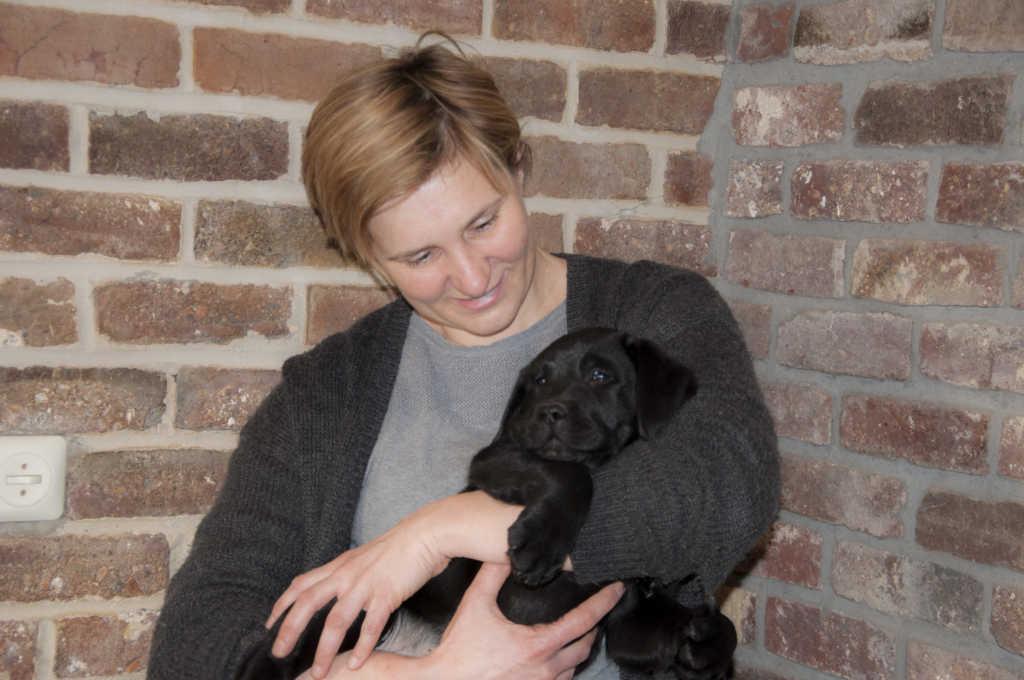 Zwart labradorteefje Pim Yochiver